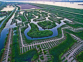 Aerial view of Wetland Maze On Yangtze River