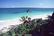 beach at Tulum, Yucatan Peninsula, Mexico ( Caribbean Sea )