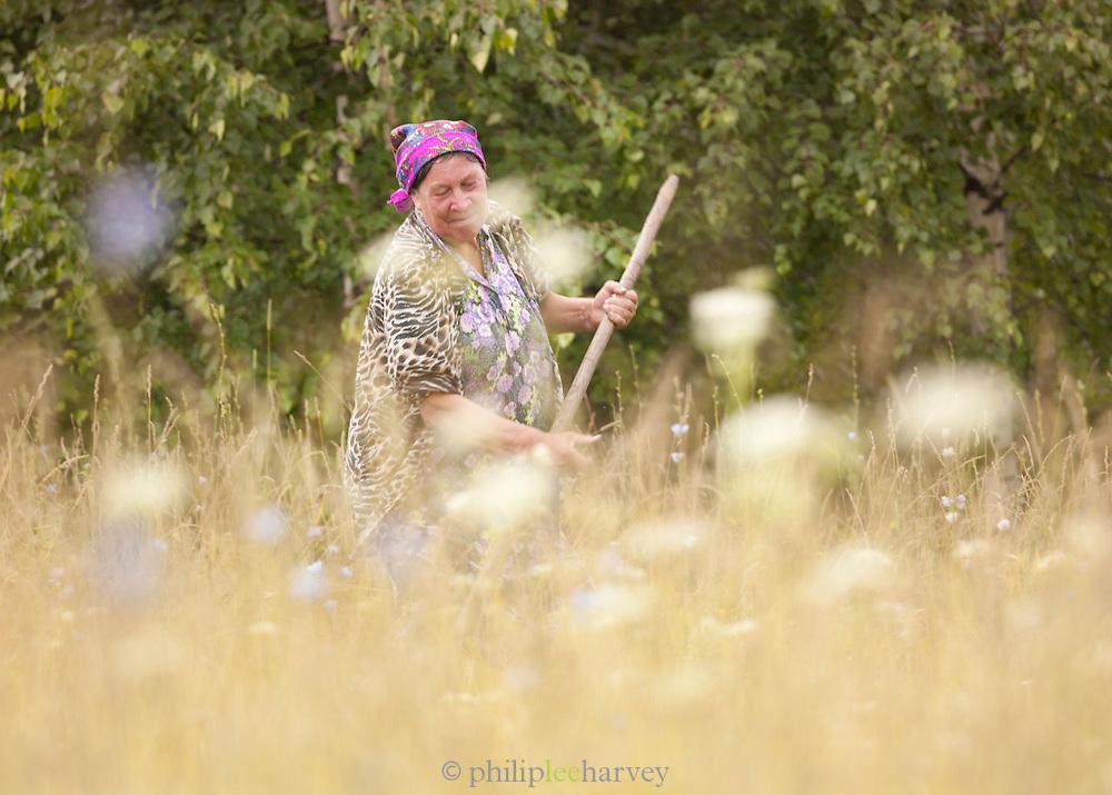 Woman cutting hay, Ekaterinburg, Russia