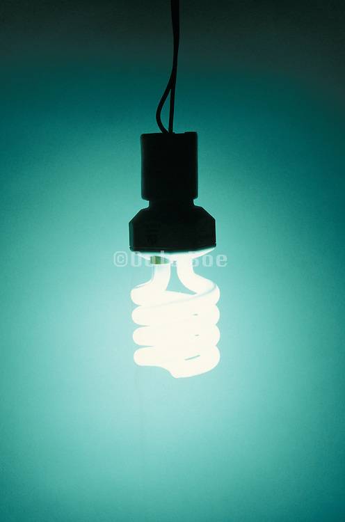 illuminated energy savings light bulb