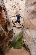A hiker uses friction to stem over a pool of green water in Zebra Slot Canyon, Grand Staircase-Escalante National Monument, Utah, USA. From Hole-in-the-Rock Road, hike east on a well-trodden but unmarked path, 5 miles round trip with 450 feet total gain to Zebra Slot.