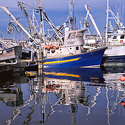 Fishing trawlers docked in Seattle, WA
