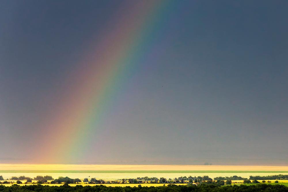A rainbow after the rain