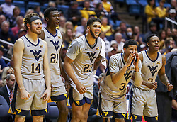 Dec 1, 2018; Morgantown, WV, USA; West Virginia Mountaineers players celebrate from the bench during the second half against the Youngstown State Penguins at WVU Coliseum. Mandatory Credit: Ben Queen-USA TODAY Sports