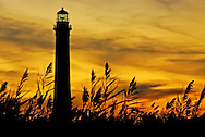 Fire Island Lighthouse, Sunset beyond the Reeds, Long Island, New York, USA. Lighthouse in sharp focus, is silhouetted, with detailed green tinted glass dome at top, and in foreground in soft focus increasing sense of depth are reeds blowing in wind.