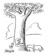 """(Dog inspecting tree with """"Out of Order """"notice"""" fixed to it)"""