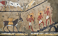 Ancient Egyptian wall paintings of the Tomb of Iti and Neferu, Ritual slaughter scene Scene, Thebes, First Intermediate Period (2118 – 1980BC). Egyptian Museum, Turin. Schiapelli excavations cat 14345/15.<br /> <br /> The ritual slaughter scene depicts an ox being held down with blodd being collected in a bowl. These tempera paintings were on a crude mud and straw plaster and were of typical Old Kingdom tombs showing ritual offering scenes. The tomb was partly cut into rock with mud brick walls and vaults. The facade of the tomb had 16 columns looking over a courtyard sloping towards the valley. These tempera paintings were on a crude mud and straw plaster and were of typical Old Kingdom tombs showing ritual offering scenes. The tomb was partly cut into rock with mud brick walls and vaults. The facade of the tomb had 16 columns looking over a courtyard sloping towards the valley. .<br /> <br /> If you prefer to buy from our ALAMY PHOTO LIBRARY  Collection visit : https://www.alamy.com/portfolio/paul-williams-funkystock/ancient-egyptian-art-artefacts.html  . Type -   Turin   - into the LOWER SEARCH WITHIN GALLERY box. Refine search by adding background colour, subject etc<br /> <br /> Visit our ANCIENT WORLD PHOTO COLLECTIONS for more photos to download or buy as wall art prints https://funkystock.photoshelter.com/gallery-collection/Ancient-World-Art-Antiquities-Historic-Sites-Pictures-Images-of/C00006u26yqSkDOM