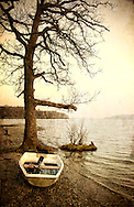 A small fibreglass rowing boat on the shore of a lake beside a tree in winter