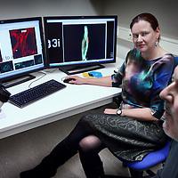 Nederland, Amsterdam , 24 november 2014.<br /> Marjolein van Egmond en René Musters in minilab met microscoop en op de vergrotingen van weefsel met cellen volgens nano technologie.<br /> <br /> Foto:Jean-Pierre Jans