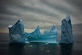 Antarctic & Southern Ocean Nature & Wildlife