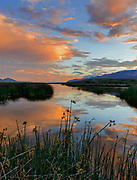 Dawn over Marsh, Steptoe Valley Wildlife Area, Nevada