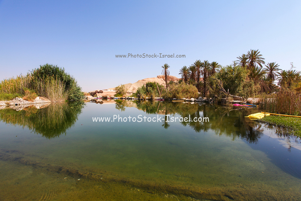 Water pool in a desert Oasis. Photographed in the Negev Desert, Israel