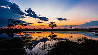 Twilight at a pond, Kwando Concession, Linyanti Marshes, Botswana.