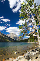 Jenny Lake is a beautiful 1200 acre lake in Grand Teton National Park. Mount Moran is the peak visible in the distance.