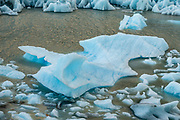 An iceberg from the Southern Patagonian Ice Field via Grey Glacier melts on Lago Grey in Torres del Paine National Park, Chile, Patagonia, South America. Grey Glacier has receded 4 km and lost 17 square kilometers from the mid 1900s through 2010.  Torres del Paine National Park is listed as a World Biosphere Reserve by UNESCO.