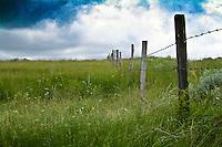 Barb wire fence on prairie, clouds overhead, Saskatchewan