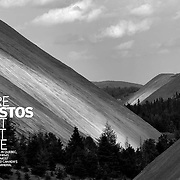 Asbestos story featured in Report on Business Magazine.