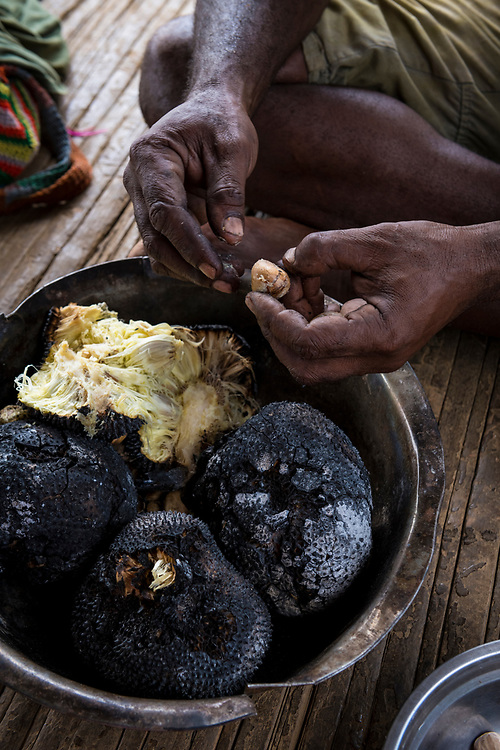 William Assin extracts the nuts, or seeds, from breadfruit after charring it in an open fire in Likan, Papua New Guinea.<br /><br />(June 20, 2019)