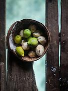 Lemon in a coconut, Solpan house.