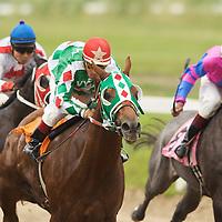 Quarter Horse Racing 2006 - Ajax Downs