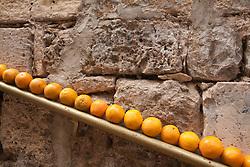 Middle East, Israel, Jerusalem, oranges lined up on railing near juice stand