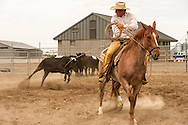 Will James Roundup, Ranch Rodeo, Three Man Cow Doctoring, Hardin, Montana, Tom Curtin, MODEL RELEASED, PROPERTY RELEASED.
