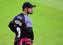 Peter Trego of Somerset looks on.  - Mandatory by-line: Alex Davidson/JMP - 15/07/2016 - CRICKET - Cooper Associates County Ground - Taunton, United Kingdom - Somerset v Middlesex - NatWest T20 Blast
