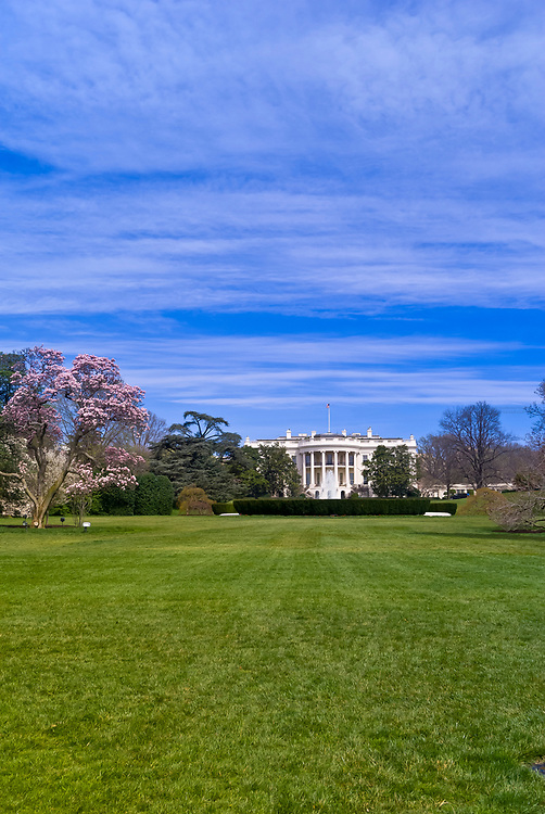 The South Lawn of the White House (framed by cherry blossoms), Washington D.C., U.S.A.