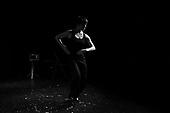 Flamenco - Leonor Leal