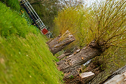 Dog walk area at Langdale Lakes <br /> <br /> 24th April 2021<br /> <br /> www.pauldaviddrabble.co.uk<br /> All Images Copyright Paul David Drabble - <br /> All rights Reserved - <br /> Moral Rights Asserted -