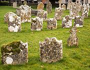 Weathered limestone gravestones, Amesbury Abbey church, Amesbury, Wiltshire, England, UK