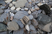 Troll Bread, a rock fractured into parallel slices by frost heave, on the coast in Hornsund, Svalbard.