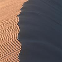 Africa, Namibia, Namib Desert, Setting sun lights curving sand dunes near coastal city of Walvis Bay