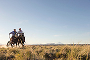 Gauchos canter across the plain, Lanin volcano behind in the distance, Estancia Huechahue, Patagonia, Argentina, South America