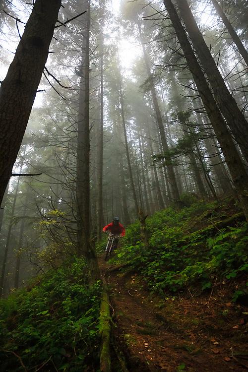 Owen Dudley rides through the mist near Bellingham, Washington.