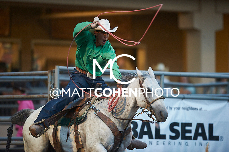 Team roper Brice Ingo of Pueblo, CO competes at the Pikes Peak or Bust Rodeo in Colorado Springs, CO.<br /> <br /> <br /> UNEDITED LOW-RES PREVIEW<br /> <br /> <br /> File shown may be an unedited low resolution version used as a proof only. All prints are 100% guaranteed for quality. Sizes 8x10+ come with a version for personal social media. I am currently not selling downloads for commercial/brand use.