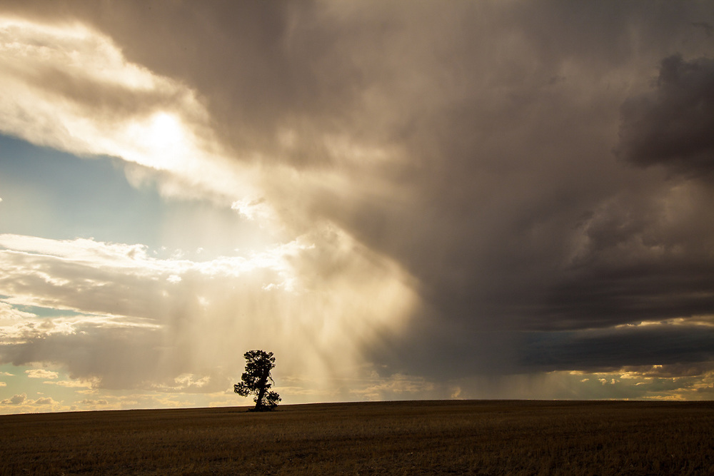 Queensland, Australia. A storm is forming in the sky.  Photo by Lorenz Berna
