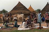 csz980429sudan1c:many village huts have been rebuilt and thousands of people displaced due to the war in sudan,  pre famine conditions in bahr el ghazal regeon of southern sudan threaten the lives of 500,000 people: pic craig sillitoe: story helen signy (smh): news extra melbourne photographers, commercial photographers, industrial photographers, corporate photographer, architectural photographers, This photograph can be used for non commercial uses with attribution. Credit: Craig Sillitoe Photography / http://www.csillitoe.com<br /> <br /> It is protected under the Creative Commons Attribution-NonCommercial-ShareAlike 4.0 International License. To view a copy of this license, visit http://creativecommons.org/licenses/by-nc-sa/4.0/.