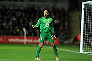Everton goalkeeper Tim Howard. Barclays Premier league, Swansea city v Everton at the Liberty Stadium in Swansea,  South Wales on Sunday 22nd Dec 2013. pic by Andrew Orchard, Andrew Orchard sports photography.