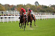 ELEGIAC (4) ridden by Silvestre De Sousa and trained by Mark Johnston winning The RaceBets Handicap Stakes over 1m 6f (£100,000)   during the Countryside Raceday, October Finale at York Racecourse, York, United Kingdom on 12 October 2018. Pic Mick Atkins