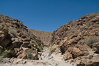 Petroglyph Canyon, Sloan Canyon National Conservation Area, Nevada