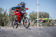#11 (WILLOUGHBY Alise) USA at round 8 of the 2018 UCI BMX Supercross World Cup in Santiago del Estero, Argentina.