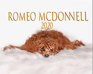 Romeo McDonnell