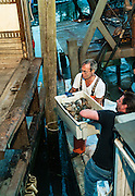 Commecial cohog fisherman with catch, Rock Harbor, cape Cod, Massachusetts, USA.