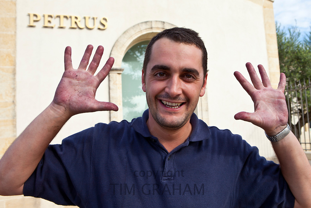 Oenologist Jean Claude Berrouet shows grape-stained hands at Petrus, Pomerol in the Bordeaux wine region of France