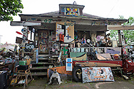 Structure in the Heidelberg Project, a folk art instaltion taking up over two city blocks in Detroit started by artist Tyree Guyton. This home was burnt down by arson in 2013. By March 2014 only two sturctures in the project remain, the were rest destroyed by fire.