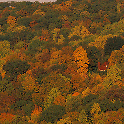 View from the Henderson property. The fall colors of the oak-hickory forest in Connecticut's Litchfield Hills.  New Milford, CT