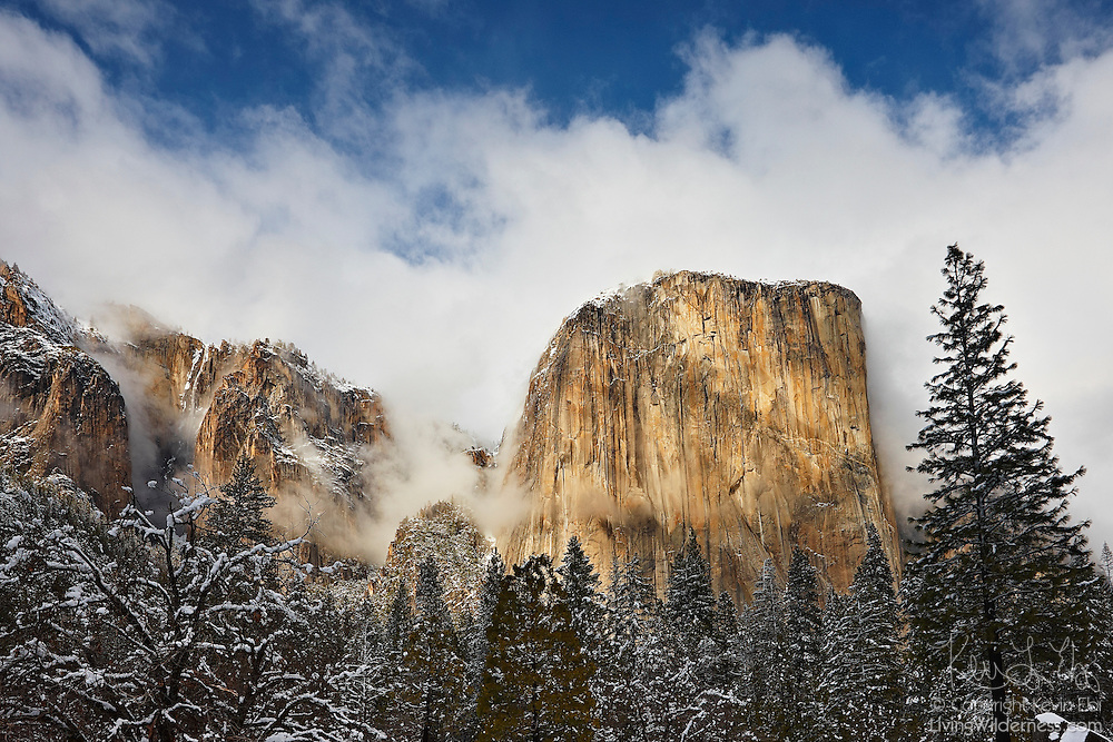 A snow storm passes over El Capitan in Yosemite National Park, California. El Capitan rises 3,000 feet (910 meters) from the Yosemite Valley floor.