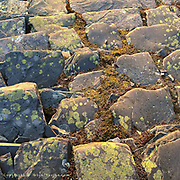 """Up to 10 x 10"""" on A3 prints only<br /> <br /> Wonderful abstract patterns of historical slate steps in the Dinorwic Quarry, slowly being reclaimed by nature."""