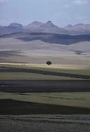"""landscape of the high plain around Gauthemoc..The train """"Chihuahua al Pacifico""""..crossing the Sierra Madre    Mexico    ..  ..Paysage du plateau près de ciudad Gauthemoc..le train Chihuahua Al Pacifico traverse la Sierra Madre    Mexique  ..R00040/3    L0007350  /  R00040  /  P0003430"""
